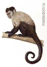 Маска и костюм обезьяны своими руками. Символ 2016 года (29)