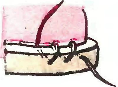 Кошмина Е.Л., Ладанюк А.А. Нехитрая обувь своими руками