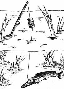 летние снасти для рыбалки своими руками