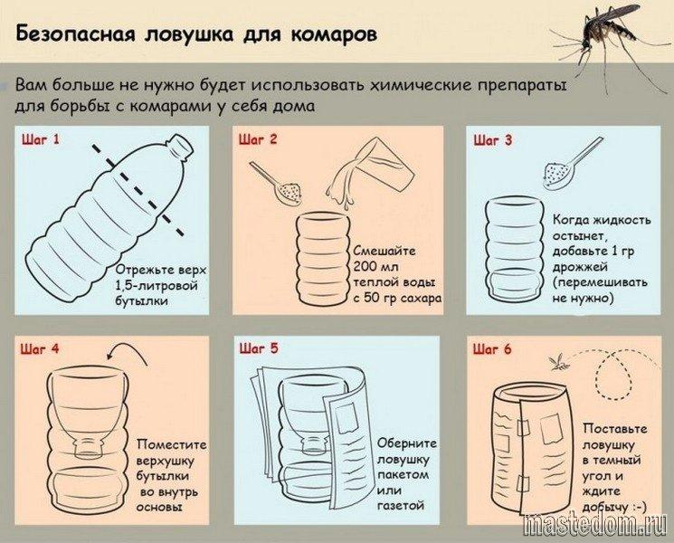 Как сделать ловушку для тараканов своими руками видео